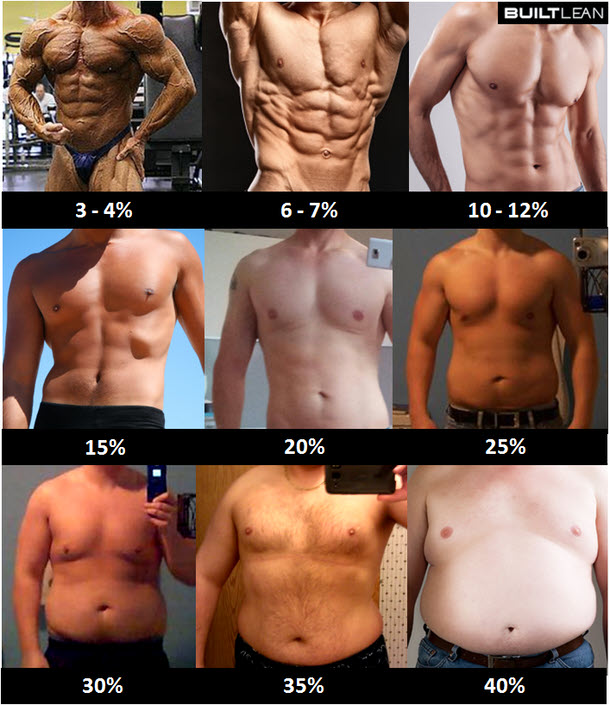 Body fat percentage chart.