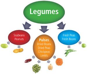 5 legumes